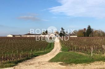 Vignoble de grand prestige dans l'appellation Haut-Médoc avec 82 hectares de vignes, chai de vinification avec cuves en béton et inox, chai à barriques, stockage et tout le matériel vini viti plus une belle maison , maison de gardien, appartement de fonct
